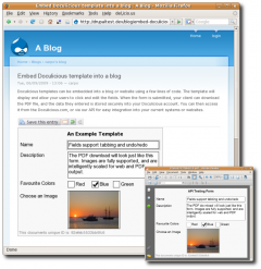 Example Doculicious Template Embedded